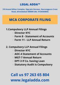 MCA ROC Filing Consultant